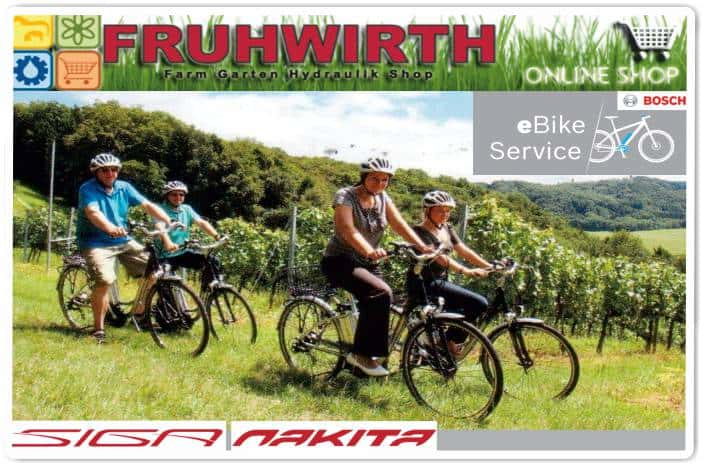Fruhwirth e bike service