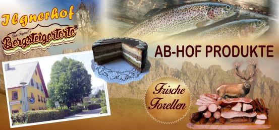 Ausflugsziele in der Hochsteiermark Essen Fisch Wilden Wirte