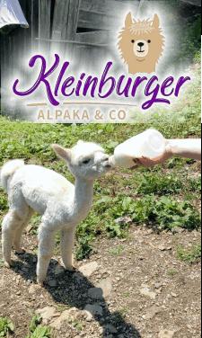 Trekkingtouren mit Alpakas in Anger